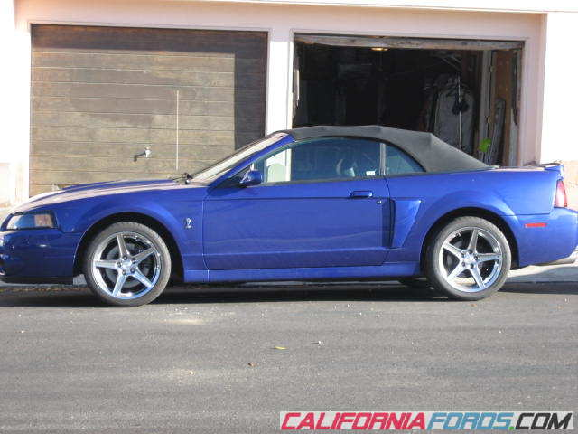 2003 Cobra Convertible